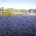 Lake-Front-Park-004
