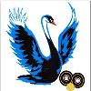 Valley-Bowls-BC-Logo